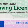 Driving Licence — Stock Photo #3092242