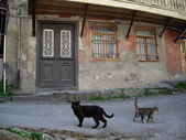 Old house, Tbilisi — Stock Photo