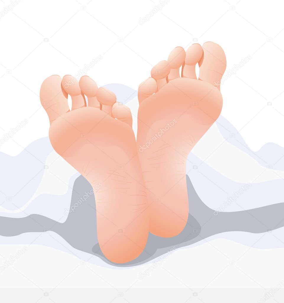 Feets, vector illustration — Stock Vector #2770666