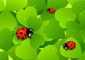Ladybird on leaf — Vector de stock