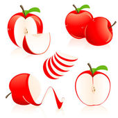Red apple pieces — Stock Vector