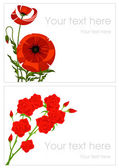 Poppy and rose greeting cards — Stock Vector