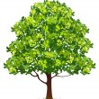 Tree — Vector de stock #3005415