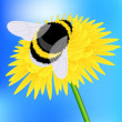 Royalty-Free Stock Vector Image: Bumblebee
