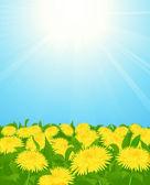 黄色蒲公英字段 — 图库矢量图片
