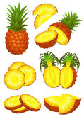 Ananas piece set — Stock Vector