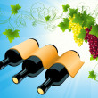 Wine bottle background — Stock Vector
