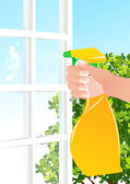 Window cleaning — Stock Vector