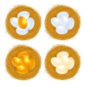 Golden eggs — Stock Vector