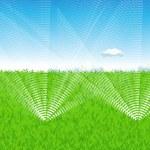 Lawn watering — Stock Vector