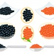 Red and black caviar — Vector de stock