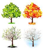 Dört mevsim ağaç — Stok Vektör