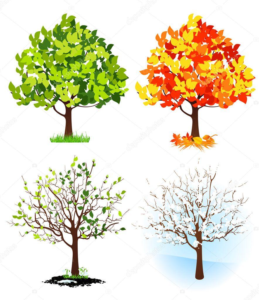 Four season trees - Stock Illustration