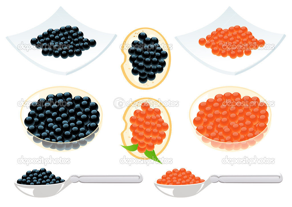 Red and black caviar, vector illustration — Stock Vector #3609517