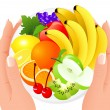 Fruit plate in human hands — Stock Vector