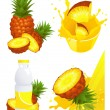 Ananas products — Stock Vector #3744971