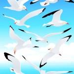 Sea gull set — Stock Vector