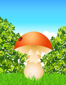 Mushroom in the forest — Stock Vector