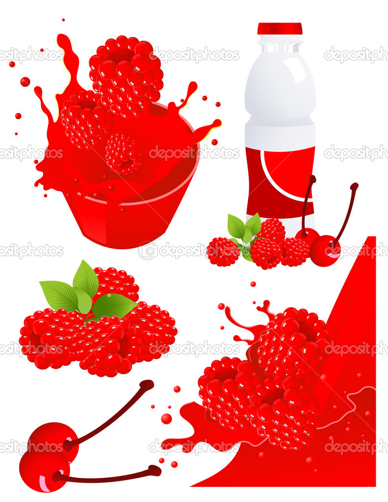 Forest berry products, vector illustration  Stock Vector #3745017