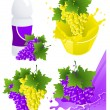 Vine products — Stock Vector #3786950
