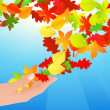 Autumn leaf in human hands — Stock Vector