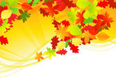 Autumn leaf scroll — Stock Vector