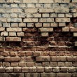 Brick wall — Stock Photo #3128633