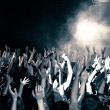 Concert crowd — Foto Stock