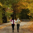 Walk in the autum — Stock Photo