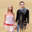 Stock Photo: Couple in grain field