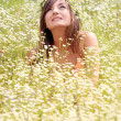 Beautiful young woman on the meadow - Stock Photo
