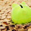 Green piggy bank and seof gold money — Stock Photo #3513273
