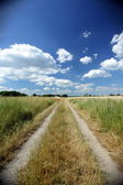 Dirt path between the fields — Stock Photo