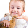 Funny boy with chickens — Stock Photo