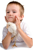 Funny boy with chicken — Stock fotografie