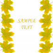Frame of autumn maple leaves — Stock Photo