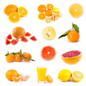 Big collection of citrus fruits — Stock Photo