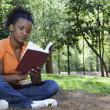 Stock Photo: Woman Reading a Book
