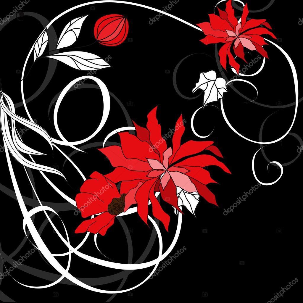 黑色背景上的红色花朵