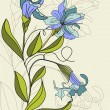 Illustration with Iris flowers - Stock Vector