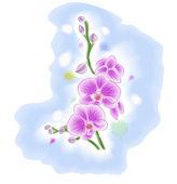 Flower pattern decoratively — Stock Photo