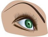 Ludzkiego oka — Wektor stockowy