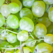 Royalty-Free Stock Photo: Vine green