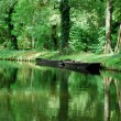 Spreewald boat and canal - Stock Photo