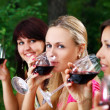 Group of beautiful girls drinking wine — Stock Photo