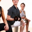 Group doing fitness exercises — Stock Photo #3817553