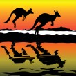 Kangaroo Australia icon - 