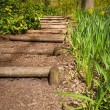 Wooden steps — Stock Photo
