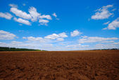 Plowed land — Stock Photo