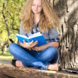 Reading outdoors — Stock Photo